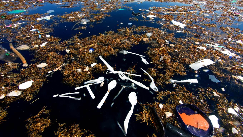 Un mar de basura en el Caribe. Foto- Caroline Power