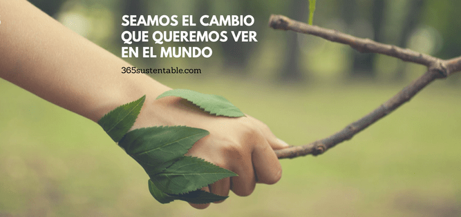 365 Sustentable, Red Latinoamericana de Desarrollo Sustentable