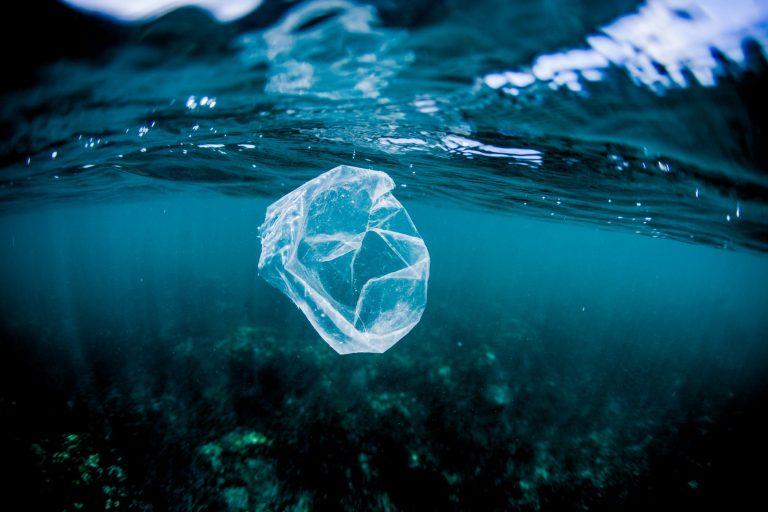 Comunidad Libre de plástico