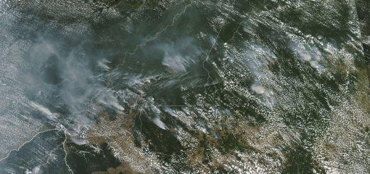 Imagen satelital de los incendios en el Amazonas (AFP)