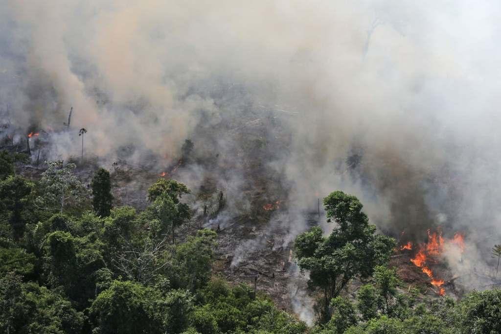 Incendios en el Amazonas. Vista de un incendio que afectó el Amazonas en septiembre de 2013, los incendios son cada vez más frecuentes Fuente: Reuters - Crédito: Bruno Kelly
