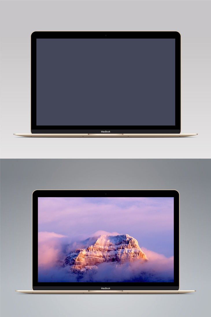 Vector MacBook Gold