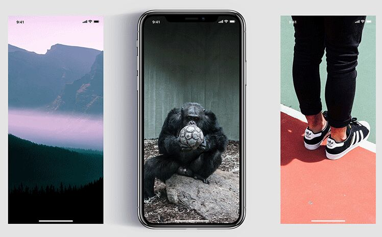 iPhone X Template – Freebie