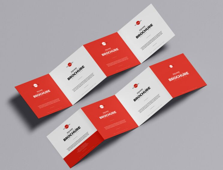 Free Square Four Fold Brochure Mockup