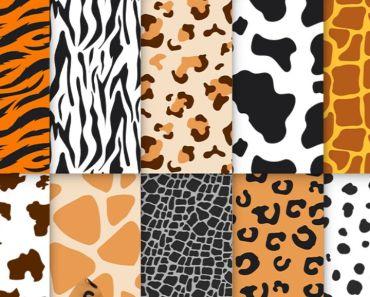Free Animal Skin Patterns