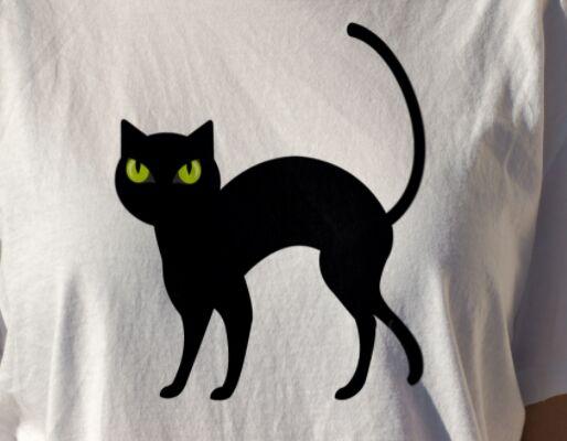 Halloween Illustration Cat