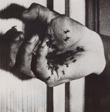 Still from Un Chien Andalou (1929)