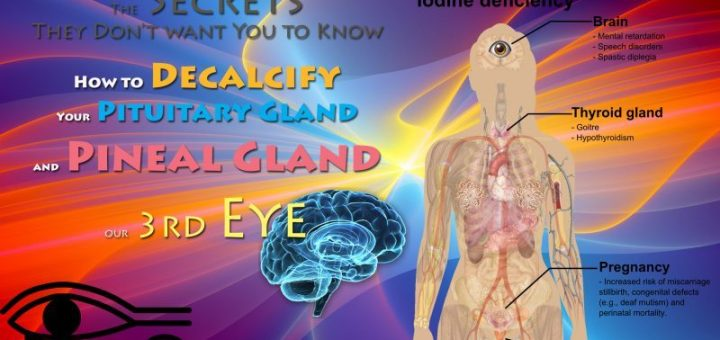 The Secrets They Don't want You to Know - How to Decalcify Your Pituitary Gland and PINEAL Gland, our 3rd Eye