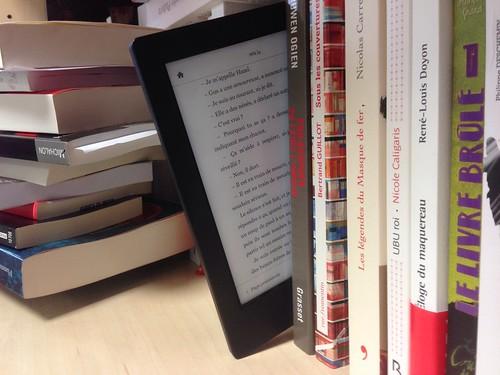 livre et liseuse