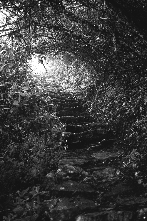 The path to End House leads to darkness.<br /> It leads to untold mysteries.<br /> If your curiosity is piqued,<br /> come follow the path.<br /> All your questions will be answered.<br /> THE DEAD GAME by Susanne Leist<br /> http://www.barnesandnoble.com/w/the-dead-game-susanne-leist/1116825442?ean=2940148410881