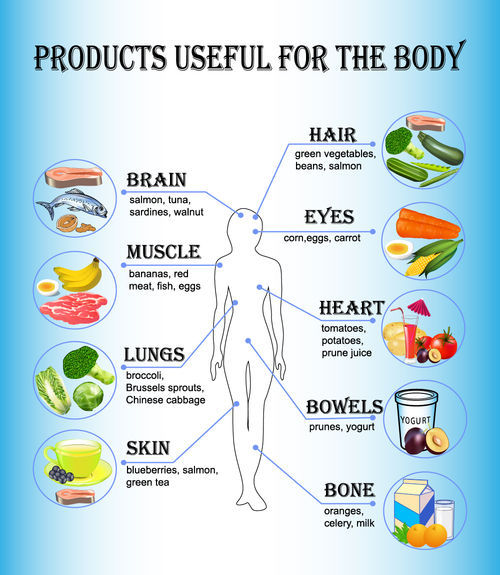 Products useful for the body