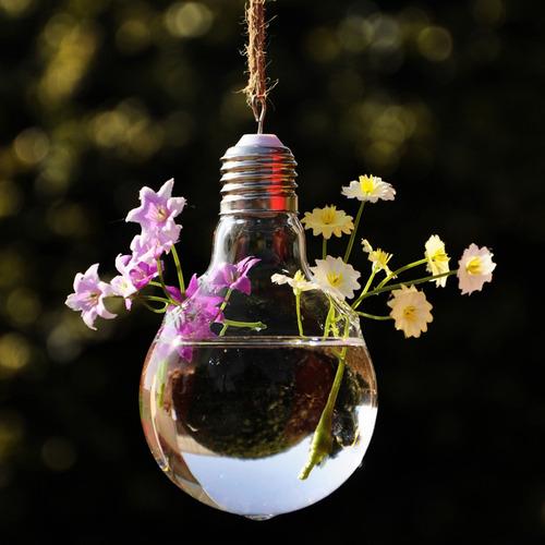 Hipster Light Bulbs