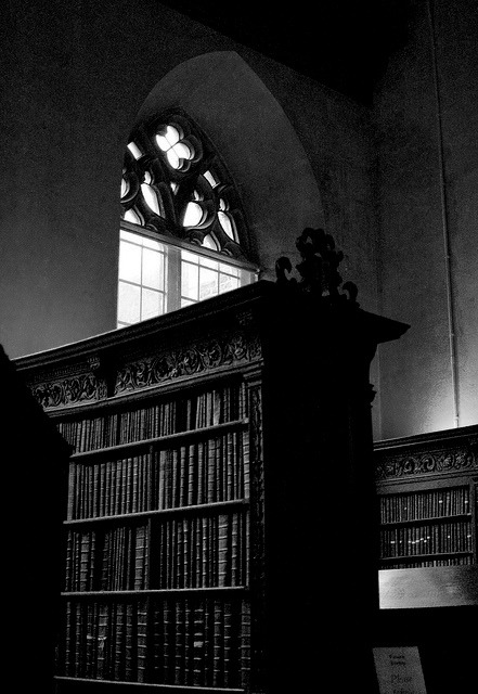 HAVING A VISION<br /> I enter the bookstore.<br /> It's cold and dark inside.<br /> I turn on the lights.<br /> Stacks of bookcases are<br /> revealed in the dim light.<br /> I draw the drapes covering the windows.<br /> The Florida sun flows in, directing its<br /> bright glow on the deserted store.<br /> I can envision couches and chairs<br /> between the huge corner windows,<br /> and a counter by the front door to<br /> serve my pastries and coffee.<br /> Yes, it was all coming alive to me.<br /> A perfect bookstore/ coffee shop.<br /> I can see a peaceful future for me<br /> in the seaside town of Oasis.<br /> Little did I know or suspect that otherworldly<br /> plans were taking place at the same time as mine.<br /> And these plans were in no way as<br /> peaceful and innocent as mine.<br /> THE DEAD GAME by Susanne Leist<br /> http://www.outskirtspress.com/thedeadgame<br /> http://www.amazon.com/author/susanneleist<br /> http://amzn.com/1478704489<br /> http://barnesandnoble.com/w/the-dead-game-susanne-leist/1116825442?ean=2940148410881