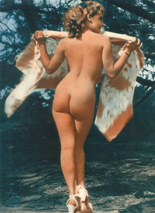 heart-shaped-apple:  nude of the day  Fun retro ass. Curvy.