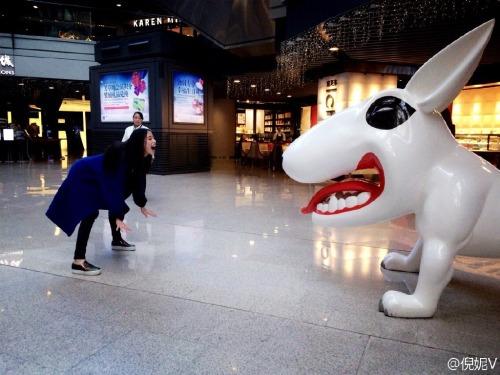 Ni Ni faces off with dog