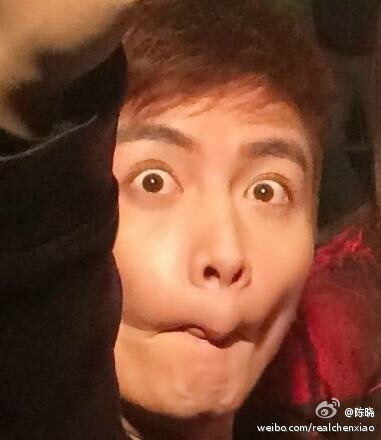 Chen Xiao making condor face