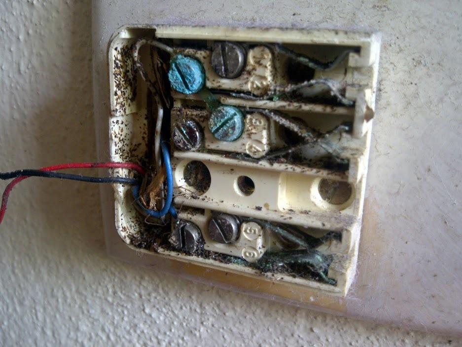 tumblr_n4x7noYRZ11taafpmo1_1280 australian telephone socket wiring diagram tamahuproject org adsl wiring diagram australia at nearapp.co