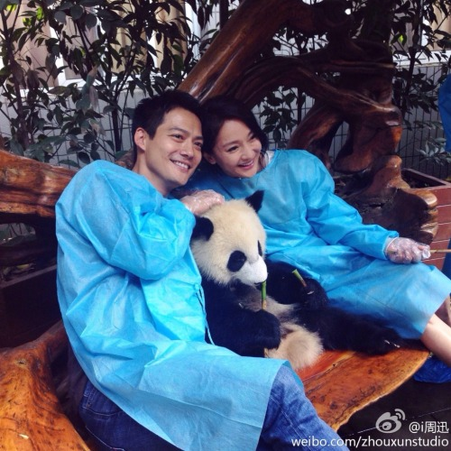 Zhou Xun with boyfriend Archie Kao and panda