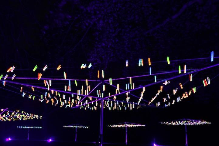 Light Installations by Bruce Munro (2/5)