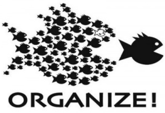 Organize fishes