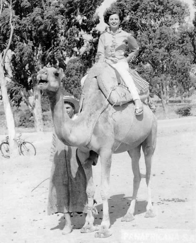 Margo Scott-Vickery on camel Morocco '63, met Bill on vacation EDIT