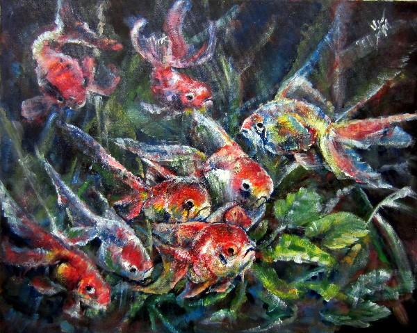 шамшиева татьяна,рыбки