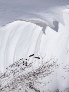 Nebraska Snowdrift