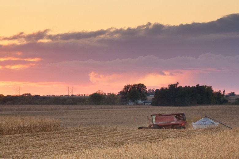 Harvest in Nebraska, Combines in the fields