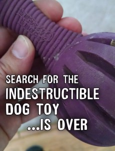 Indestructible Dog Toy Search for large breed dogs