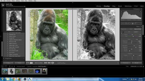 Black and White Lightroom Example