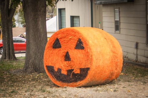 Round Bale Pumpkin