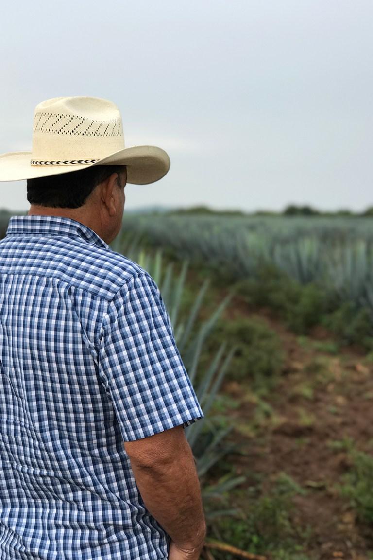 """El Campo """"The Ranch"""""""
