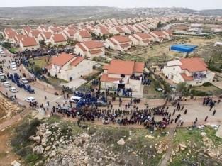 ارض استثمارية للبيع / البحر الميت