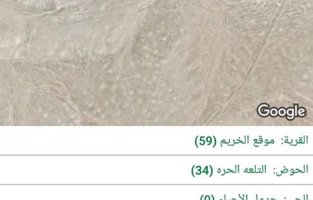 ارض في جنوب عمان للبيع
