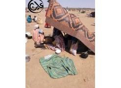 طرد المنظمات الدولية بولاية غرب دارفور يؤدي الي تفاقم الاوضاع الانسانية