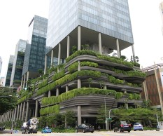 Image result for urban vertical farming pictures