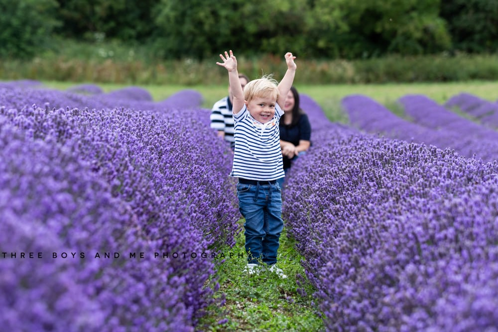 little boy with arms in the air at his lavender family photoshoot in Kent