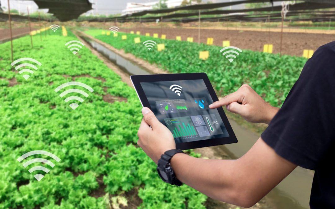 IoT teknologi – kan teknologi øke kvalitet og senke kostnad?