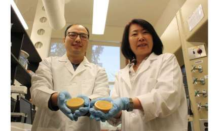 Researcher developing new industrial uses for wax made from soybean oil