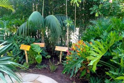 Crocoparc-jardin-Botanique-Agadir