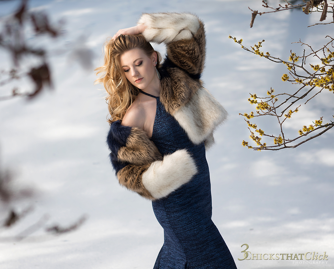 Jolie in Winter, snow photo session, Holmdel Park, 3 Chicks That Click Photography, blue gown, evening gown