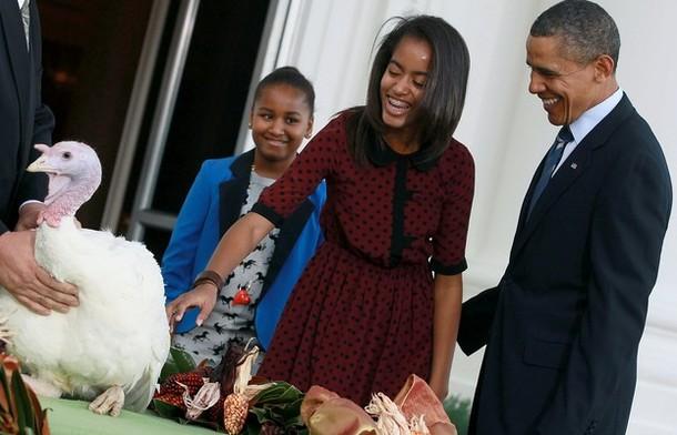 Obama Pardons The National Thanksgiving Turkey