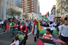 Protests for Gaza45