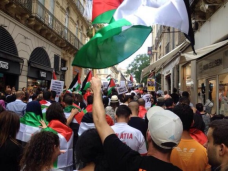 Protests for Gaza55