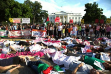 Protests for Gaza56