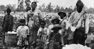 slave life- slave-family-P