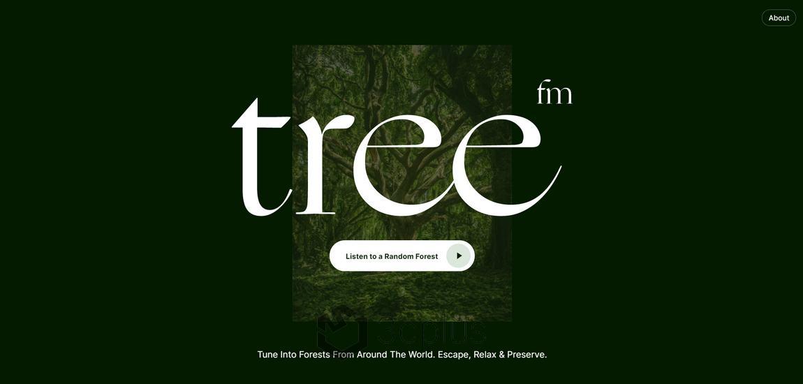 Tree.fm 給你來自大自然的美好聲音
