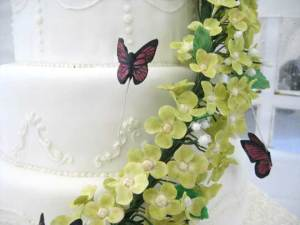 Wedding Cake Questions to Ponder