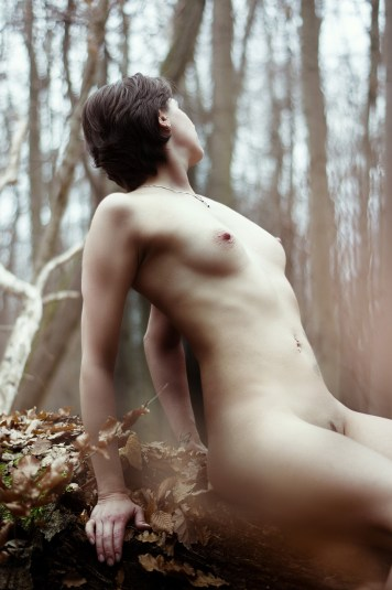 forest_13