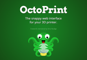 Octo-pi 3d printer software